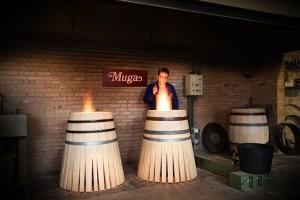 Haro, más allá de la capital del Rioja