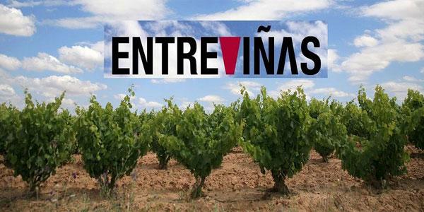 Llega el 'Entreviñas' de Aldeanueva de Ebro