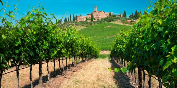 Lambrusco, el vino amable