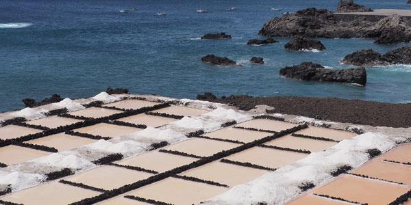 La Palma, el sabor de la isla