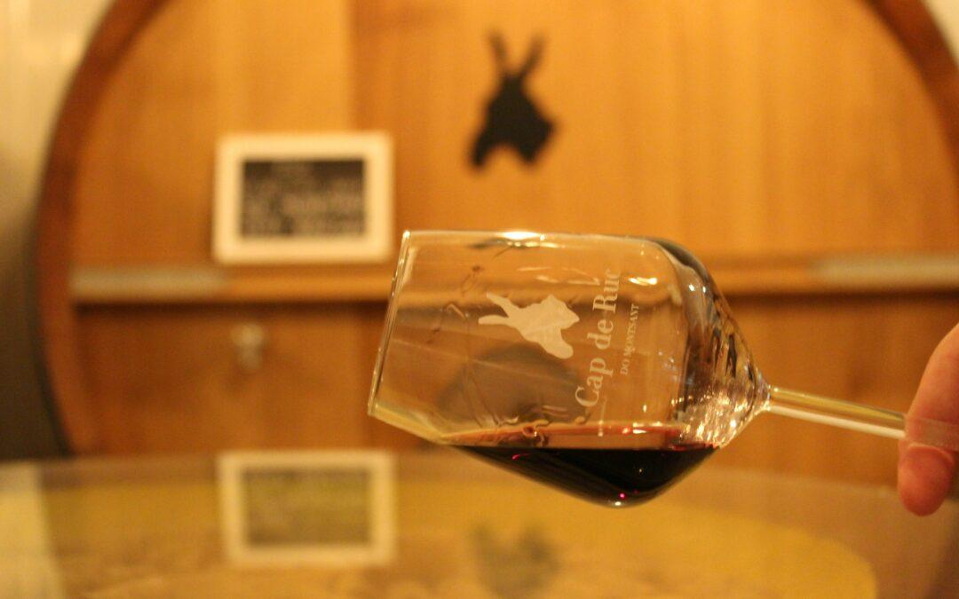 Cata de vinos «Cap de Ruc a Ciegas»