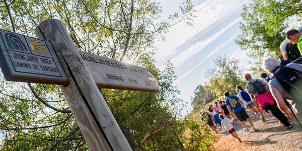 El Camino Santiago alternativo que pasa por la Rioja Alavesa