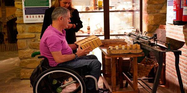 Enoturismo , accesibilidad e inclusión en La Rioja