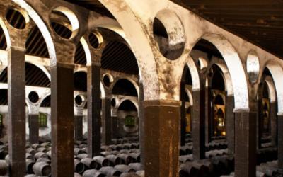 Amantes del vino, no olvideis visitar Jerez !