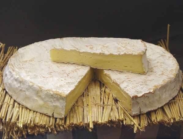 queso brie de meaux