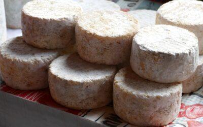 Ruta por los mejores quesos de Francia