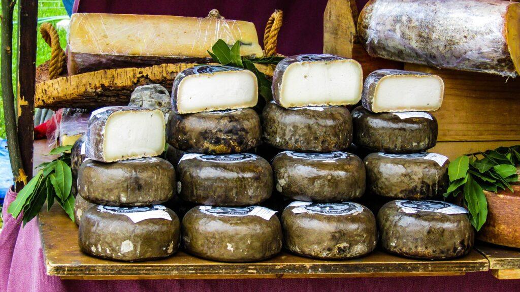 lacteoturismo quesos oveja
