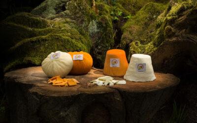 Los quesos asturianos se presentan al mundo