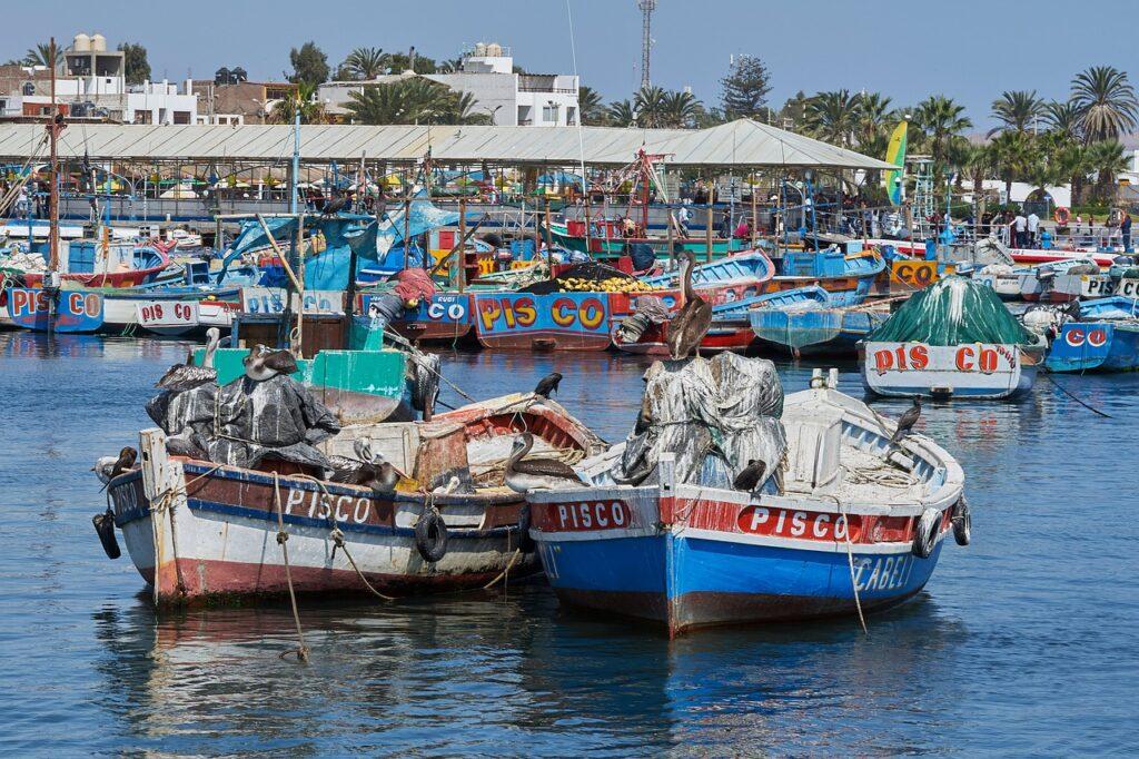 pisco barcos perú