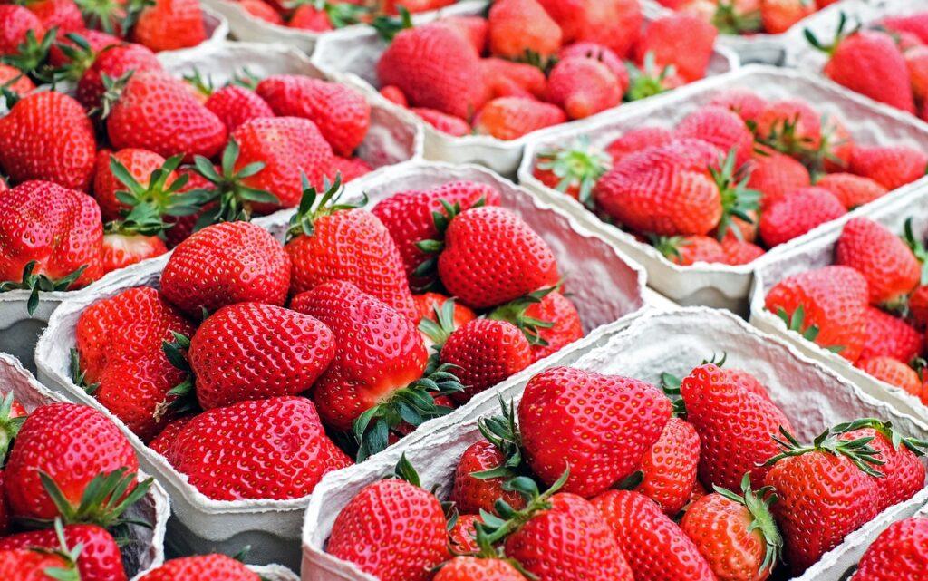 fresas envasadas para su venta